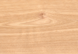 Domestic and Exotic Hardwood Products | The Carpenter's Shop