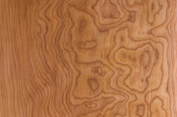 Domestic And Exotic Hardwood Products The Carpenter S Shop